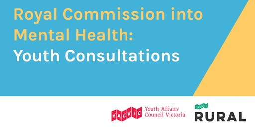 Royal Commission into Mental Health - Youth Consultations (First Session - Warrnambool)
