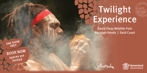 Twilight Experience