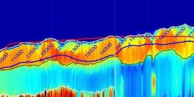 Horizontal and Deviated Well Geosteering: Oman