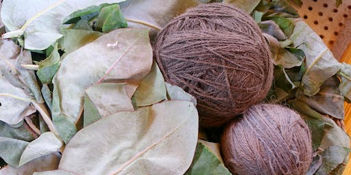 Future Focus - Introduction to Sustainable Natural Dyeing - University of Exeter (Cornwall)