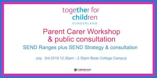 SEND Ranges workshop & consultation 3/7/19 12:30pm