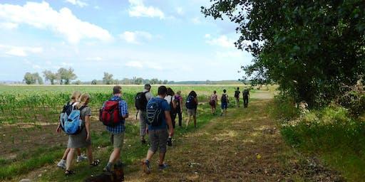 Fr,19.07.19 Wanderdate SingleTreff Ausblick auf Mainhattan für 50+