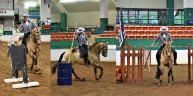Introduction to Working Equitation clinic
