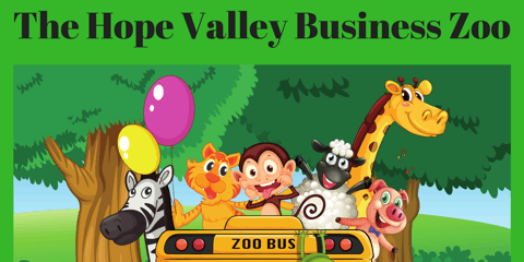 Hope Valley Networking Event