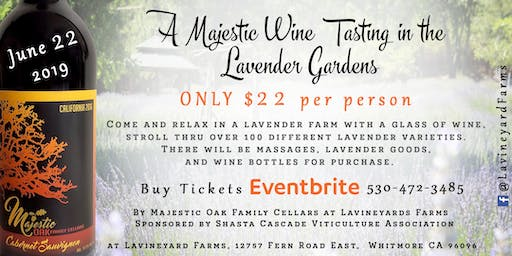 A Majestic Wine Tasting in the Lavender Gardens