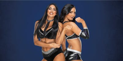 WWE® Superstars The IIconics™