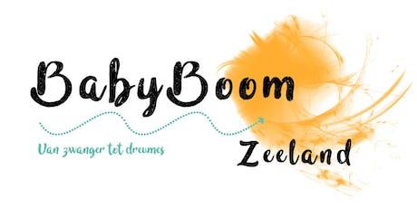 BabyBoom Zeeland tickets