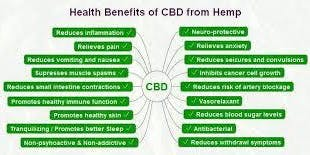Introduction to CBD