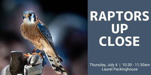 Raptors Up Close