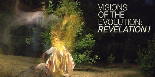 visions of the evolution: revelation 1