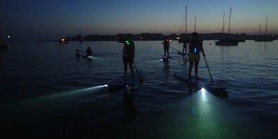 SUP Glow