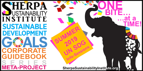 UN SDG SUMMER INFO-SESSION SERIES - CORPORATE GUIDEBOOK PRODUCTION tickets