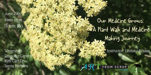 Our Medicine Grows: A Plant Walk and Medicine Making Journey