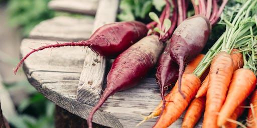 Extending Your Summer Garden