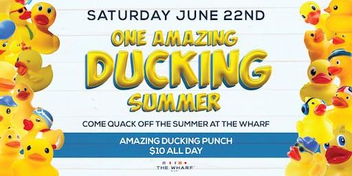 ONE AMAZING DUCKING SUMMER!