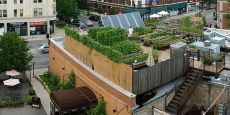 WIG Annual Uncommon Ground Rooftop Farm Gathering tickets