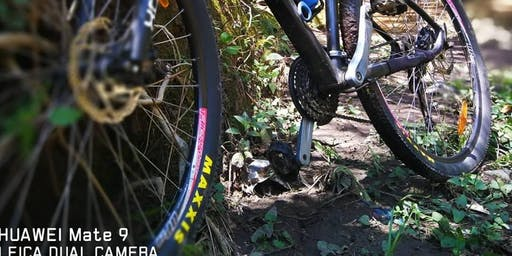 Vuelta al Metropolitano en Bicicleta