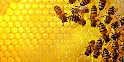 Beginning Beekeeper Course Fall 2019
