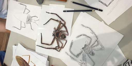 Kids Drawing Class with Bill Tink