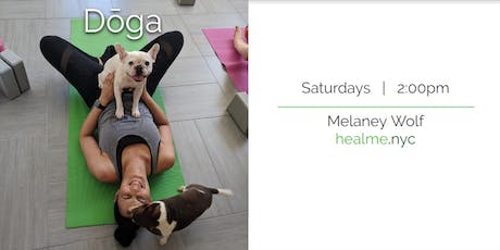 Doga (Yoga with your Dog) tickets
