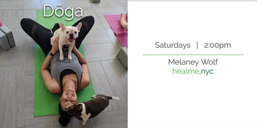 Doga (Yoga with your Dog)