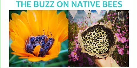 THE BUZZ ON NATIVE BEES - Fundraising Event tickets