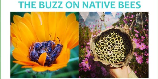 THE BUZZ ON NATIVE BEES - Fundraising Event
