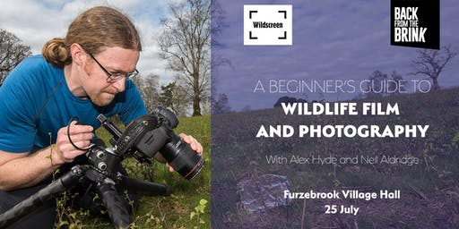 Beginner's guide to wildlife film and photography