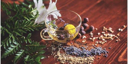 Medicinal Plants & Organic Herbs Workshop