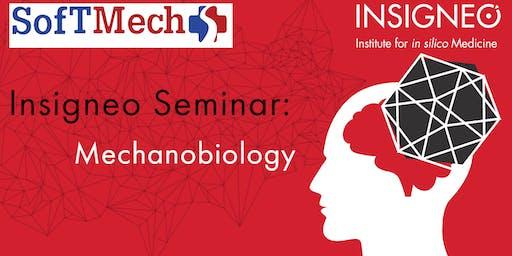 Insigneo Seminar: Mechanobiology