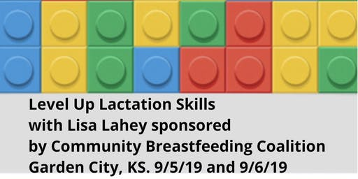Community Breastfeeding Coalition sponsoring-Level UP Lactation Skills with Lisa Lahey RN, IBCLC, OMT