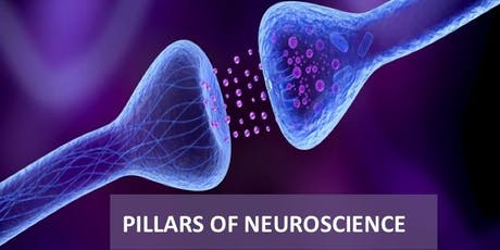 Pillars of Neuroscience for Coaches and Consultants - 2 days Certification tickets