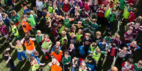 Liam Mellows Hurling and Camogie Summer Camp: 2019  tickets