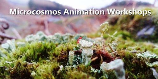 Microcosmos - Animation