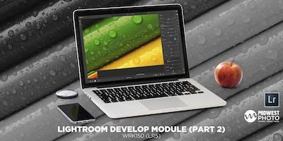 Lightroom Develop Module (Part 2)-WRK132 (LR5)