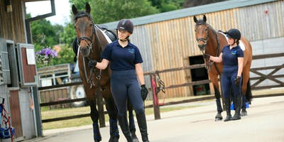Equine Employer Evening