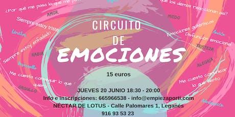 Circuito de EMOCIONES - taller introductorio a la Ingeniería Emocional entradas