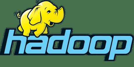 Big Data Hadoop Training: Beginner Class - NYC tickets