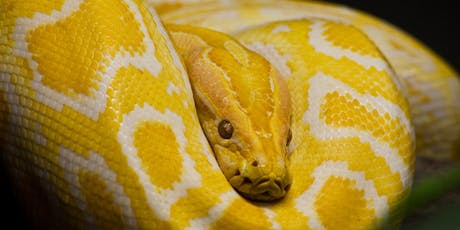 Atlas Obscura Society Denver: Snakes in the Plains! tickets