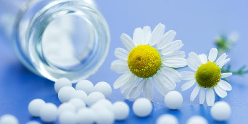 Summer Guest Series: Homeopathy 101 With Julie Holmgren- Part 1 & 2
