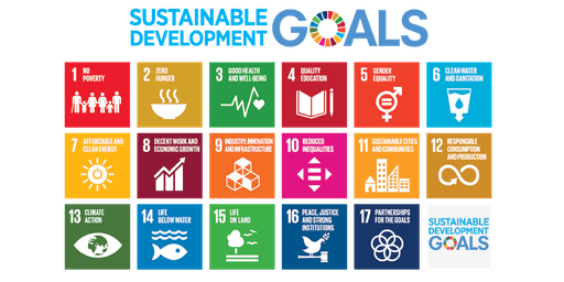Making Global Goals Local Business