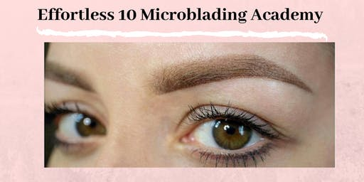 Effortless 10 Microshading Powder Ombre Training Richmond VA June 16th