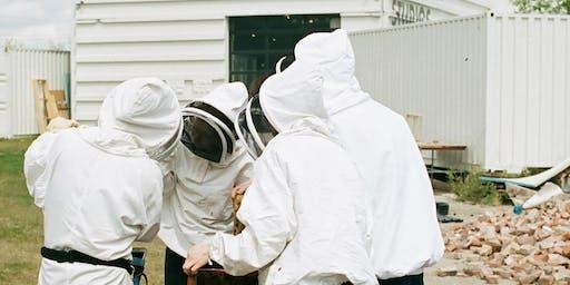 MOB Beehive Tour