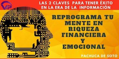 REPROGRAMA TU MENTE EN RIQUEZA EMOCIONAL Y FINANCIERA