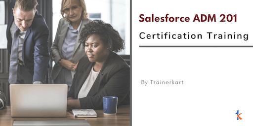 Salesforce ADM 201 Certification Training in Springfield, IL