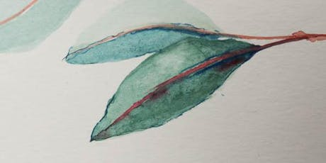 Watercolour painting for beginners- Eucalyptus leaves tickets