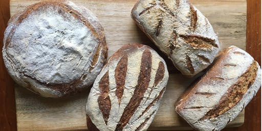 Sourdough Bread Making for Beginners