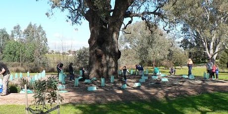 Community Planting morning in Yarralumla Drive parklands tickets