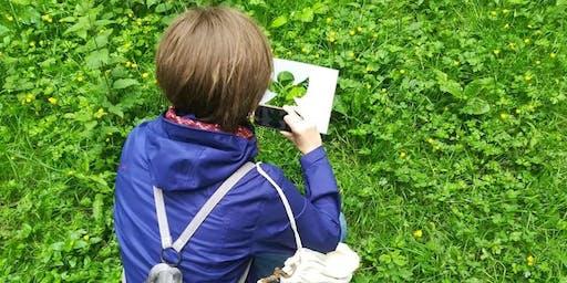Bain de forêt : A la découverte de la sylvothérapie !