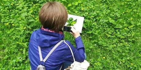 Bain de forêt : A la découverte de la sylvothérapie !  billets